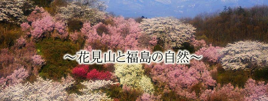 ~花見山と福島の自然~