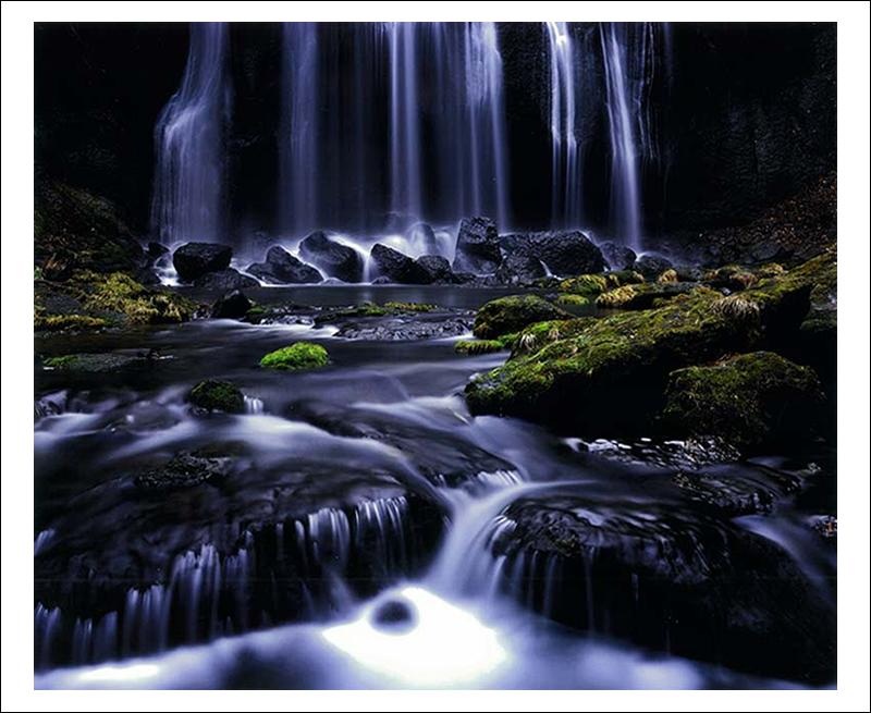 第9回 花見山フォトコンテスト - 福島県花見山のフォトコン情報
